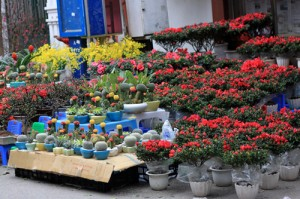 Hang Luoc- Famous Flower Market in Hanoi