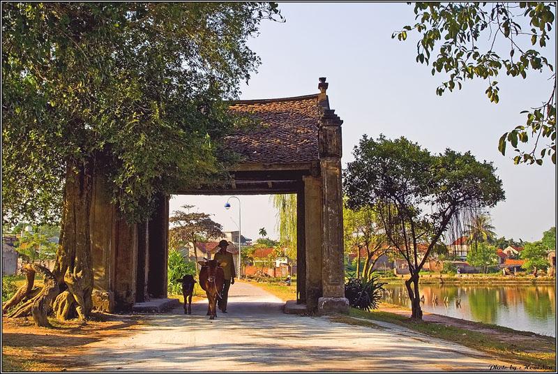 Kết quả hình ảnh cho Duong Lam Ancient Village