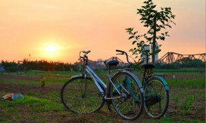Four Locations for Riding Bicycle in Hanoi Autumn