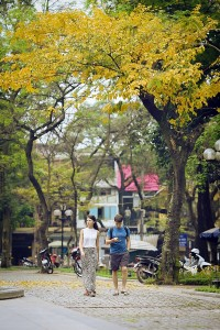 A Series of Beautiful Hanoi Images on Nicest Days in Year
