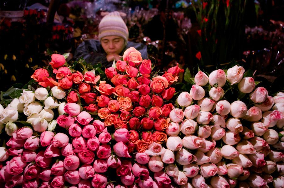 Night-Flower-Market-Busy-When-Hanoi-Falls-Asleep (7)