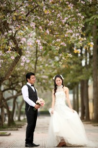 Beautiful Flower Gardens for Photo Shoot Locations in Hanoi