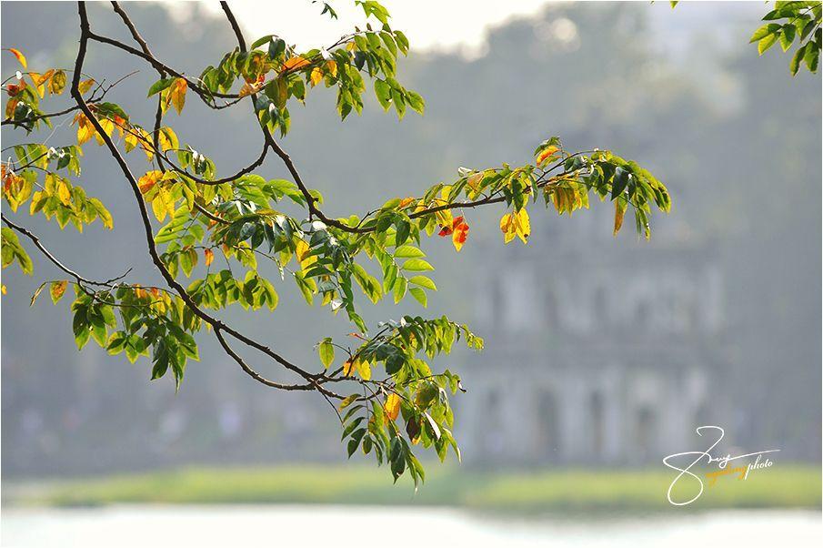hanoi autumn (10)