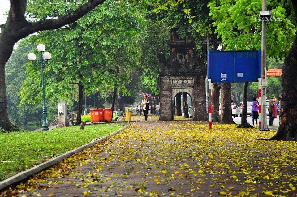 hanoi autumn (11)