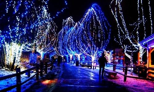 west-lake-christmas-2