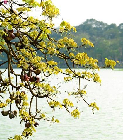 hoan-kiem-lake (1)