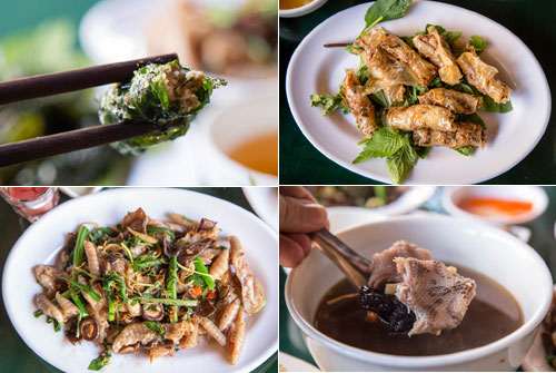 Experience Snake Meat In Vietnam of American Tourists (1)