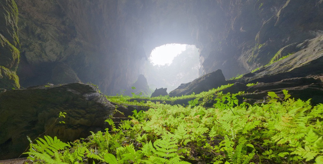 Son Doong Cave (9)