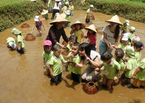 Picnic Destinations Nearby Hanoi On Children's Day
