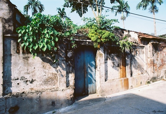 Cuu Village Where Preserves Nostalgic Values of Ha Noi (1)