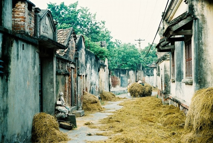 Cuu Village Where Preserves Nostalgic Values of Ha Noi (7)