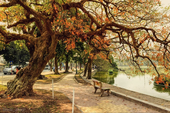 Three Beautiful Places In Hanoi Autumn  (1)