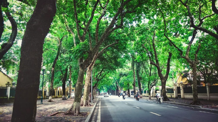 Three Beautiful Places In Hanoi Autumn  (7)