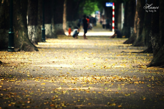 Three Beautiful Places In Hanoi Autumn  (9)