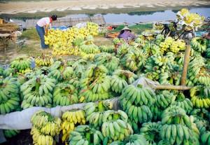 Top Local Markets in Hanoi – Banana Market