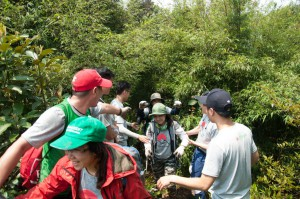 Short trekking tour in Tam Dao