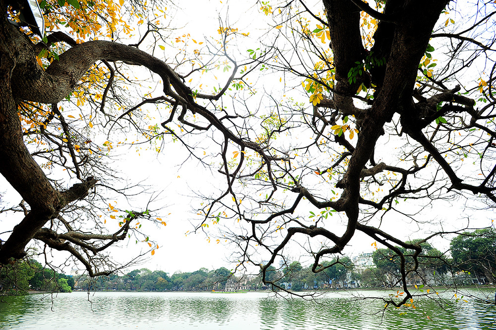 Hoan Kiem lake in the morning
