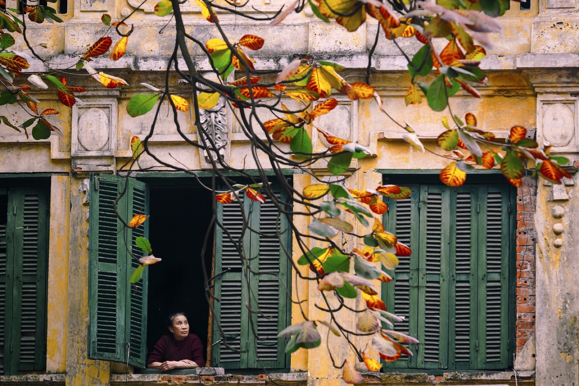 Autumn in a corner of Hanoi