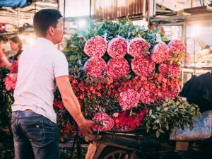 Quang An Flower Market Hanoi Vietnam: A Beautiful Early Morning Adventure