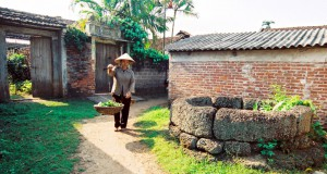 Duong Lam ancient village-a closer look into Vietnamese culture