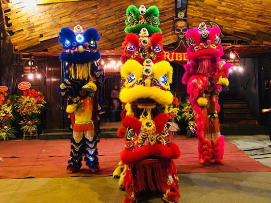 Lion dance in the festival