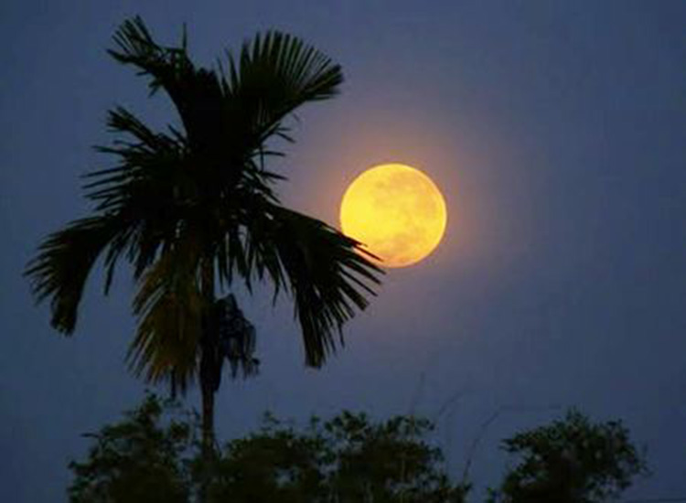 Full Moon night, the best moment of the moon in a single year