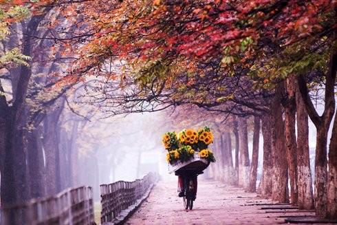 Hanoi in the autumn