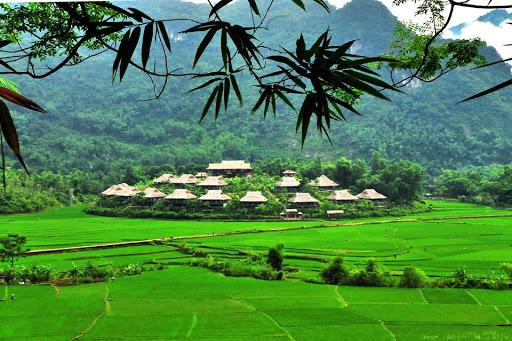 The green Mai Chau in summer